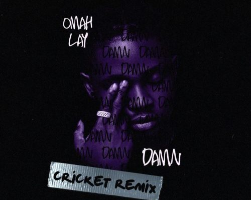 Omah Lay Damn (Cricket Remix) mp3